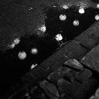 rain spot 2017