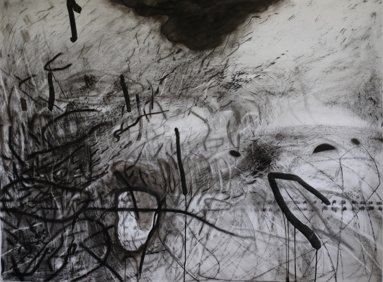 """opson 1/36""""x48""""/india ink, graphite, charcoal, pencil on paper"""